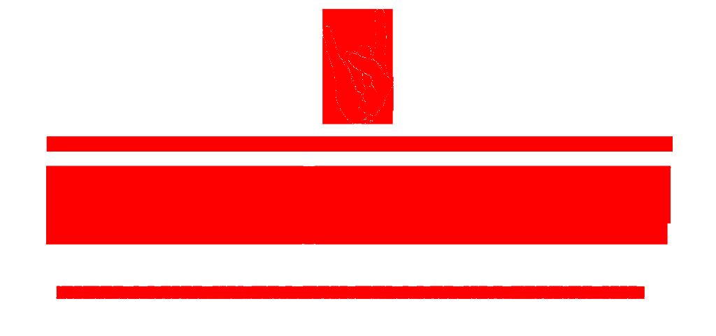 The Matador Review